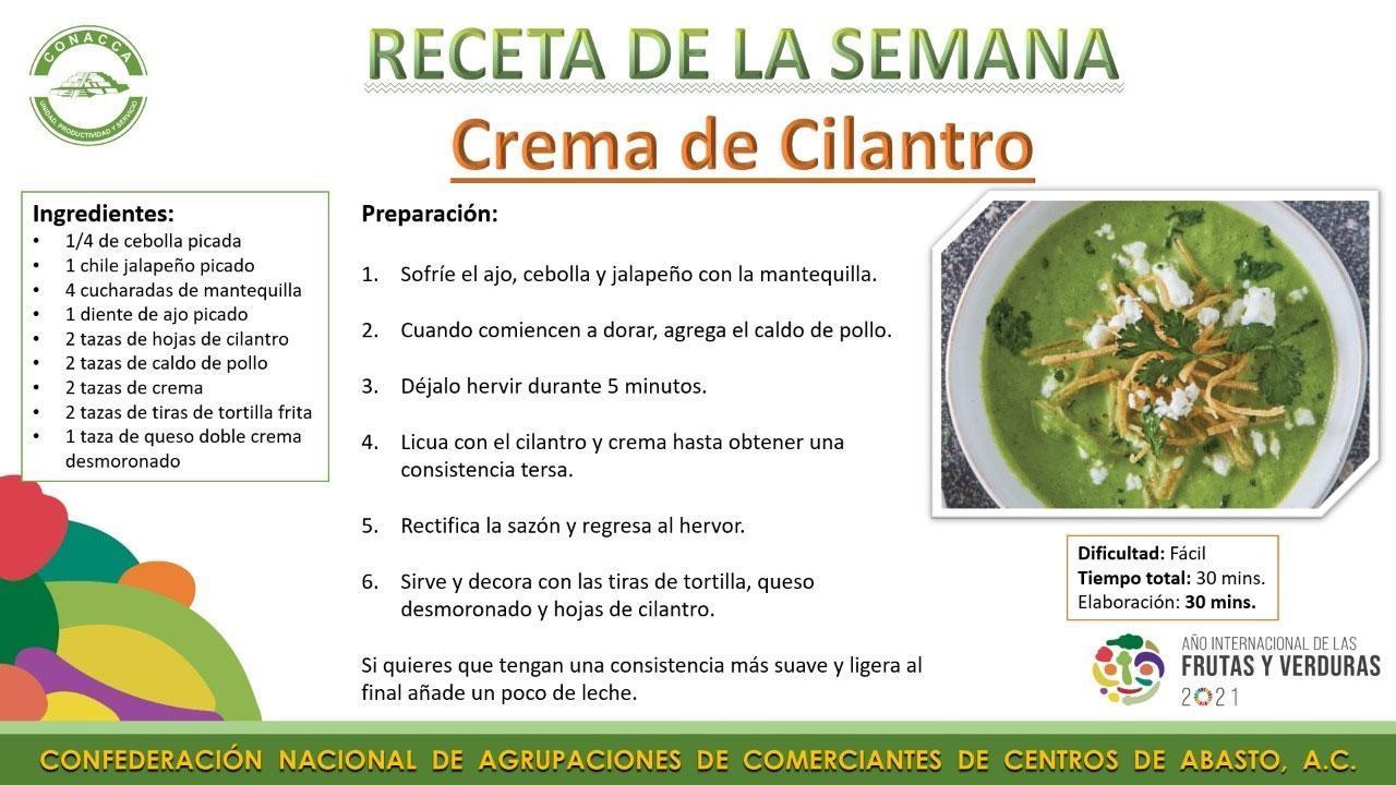 crema_de_cilantro_receta